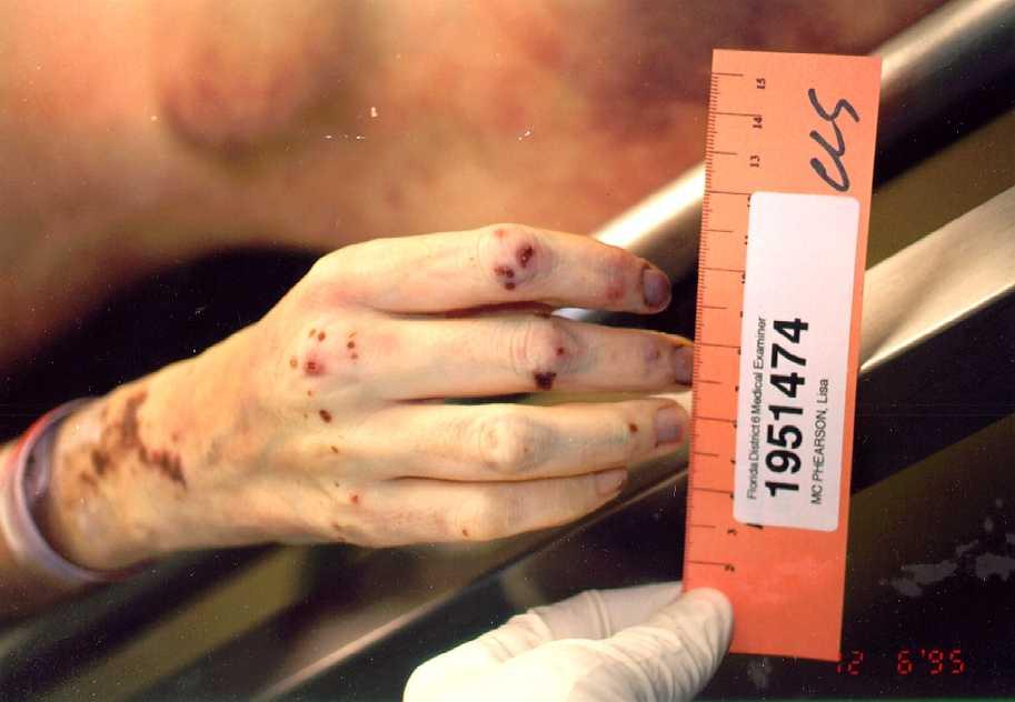 Autopsie celebrity apprentice